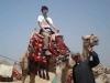 egiypt